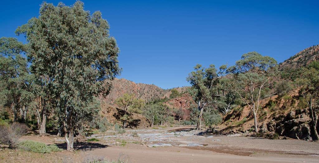 Brachina Gorge - Flinders Ranges