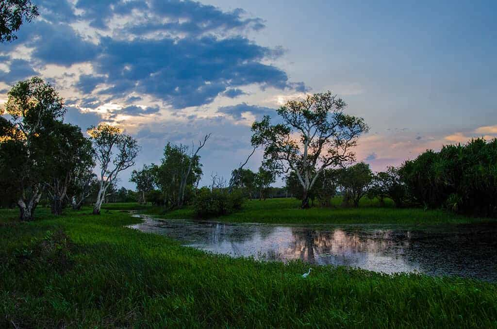 Coucher de soleil sur la yellow water - kakadu