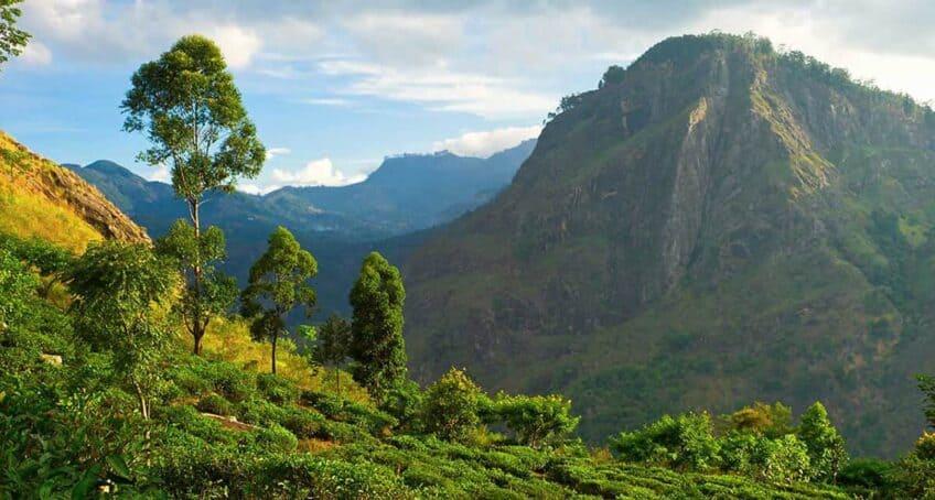 Horton-Plains-Sri-Lanka