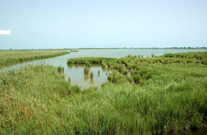Delta-de-l-ebre