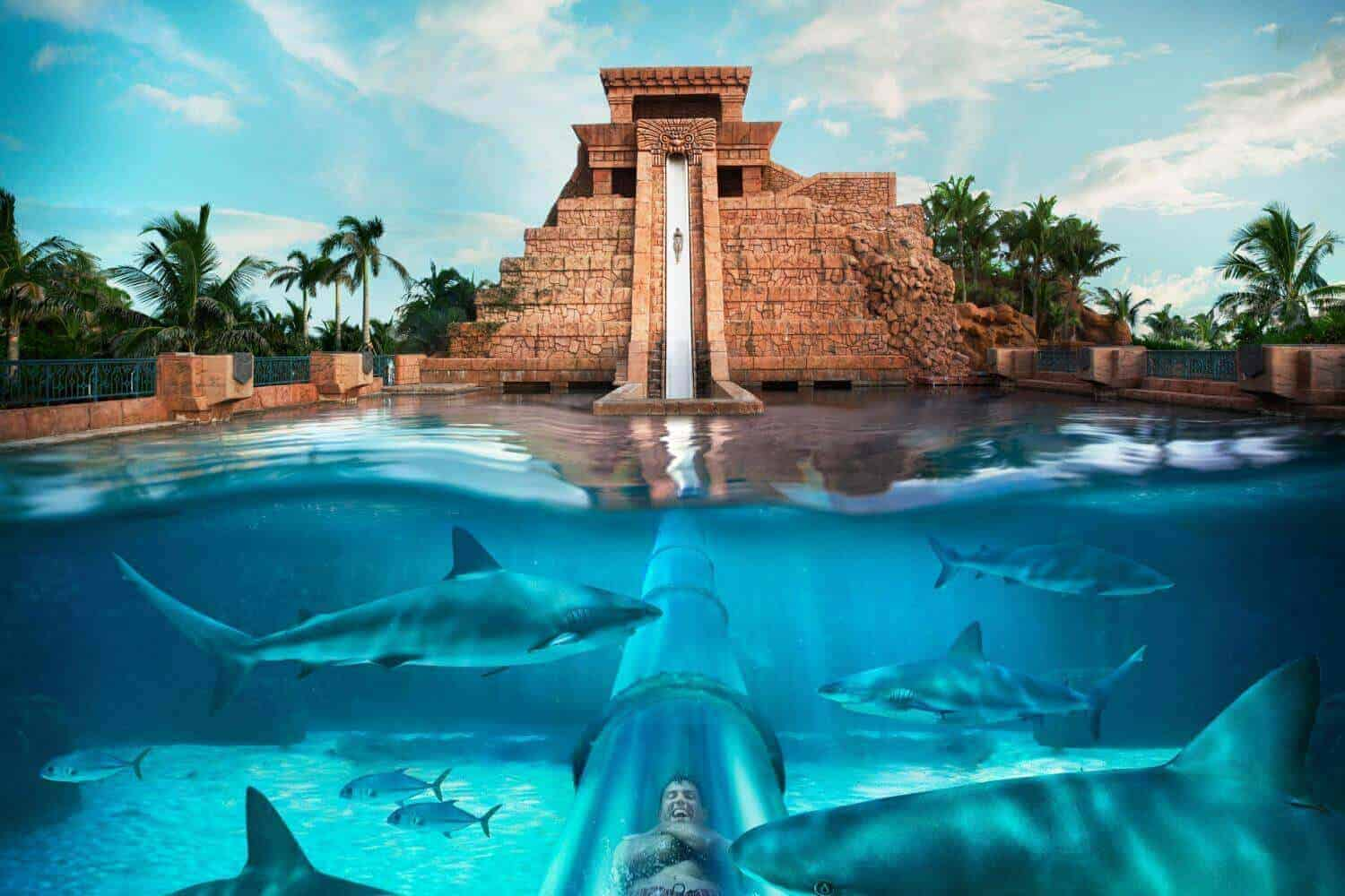 Que faire duba nos bons plans pour visiter duba for Atlantis piscine