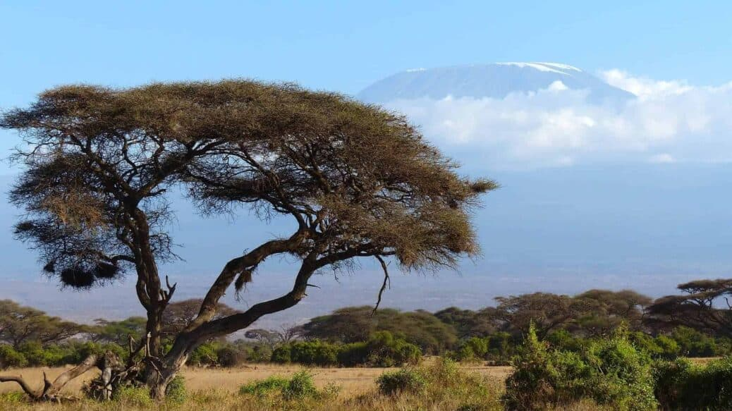faire ascension du kilimanjaro