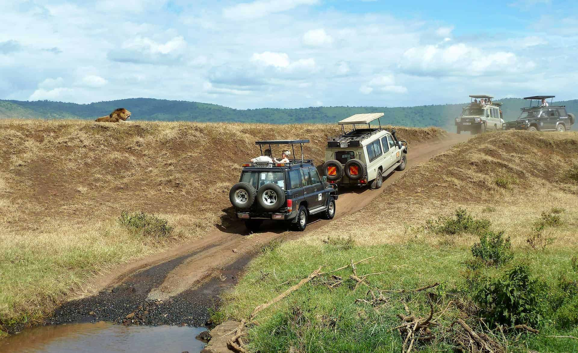 que faire en tanzanie