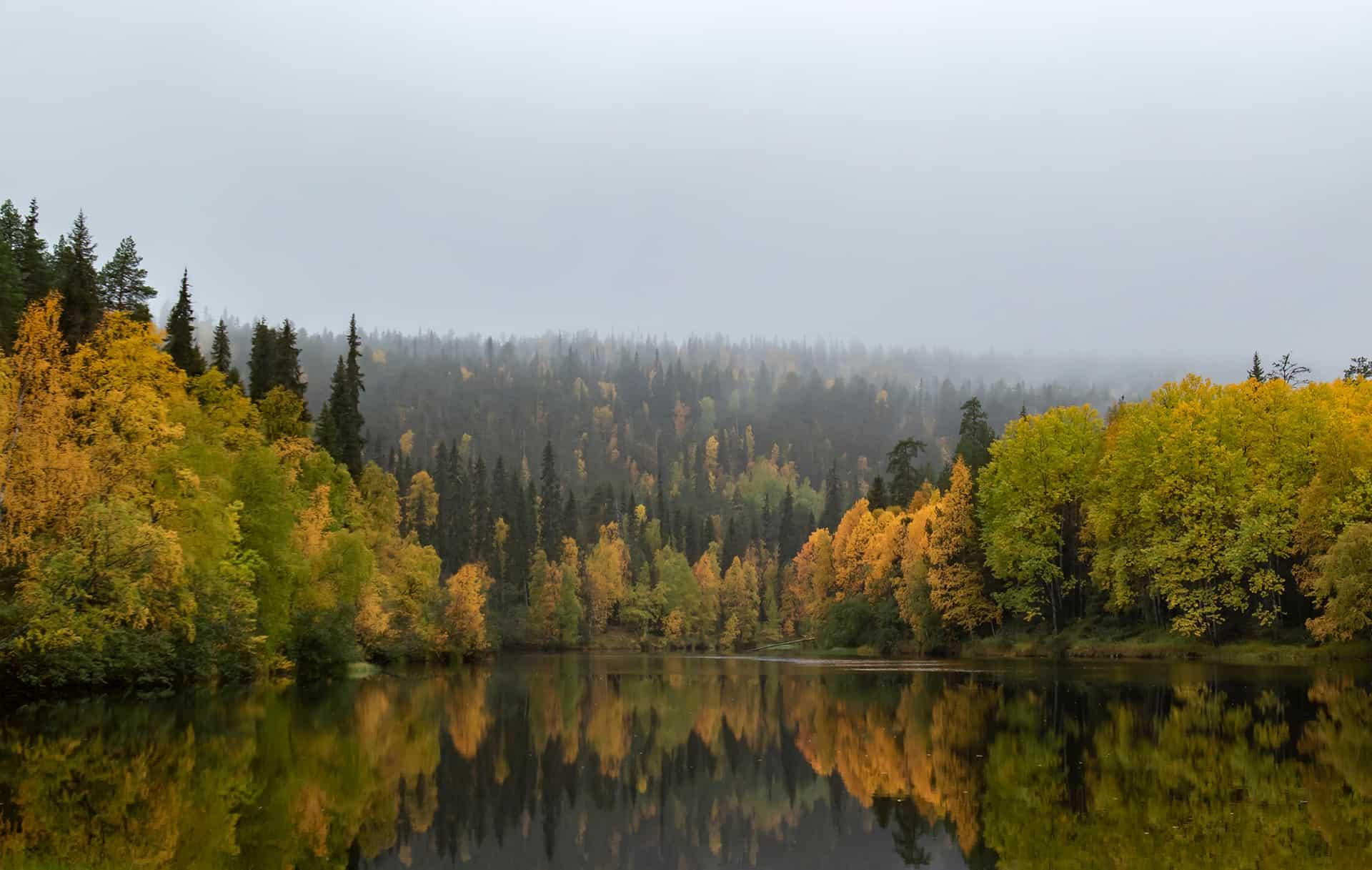 visiter la laponie en automne