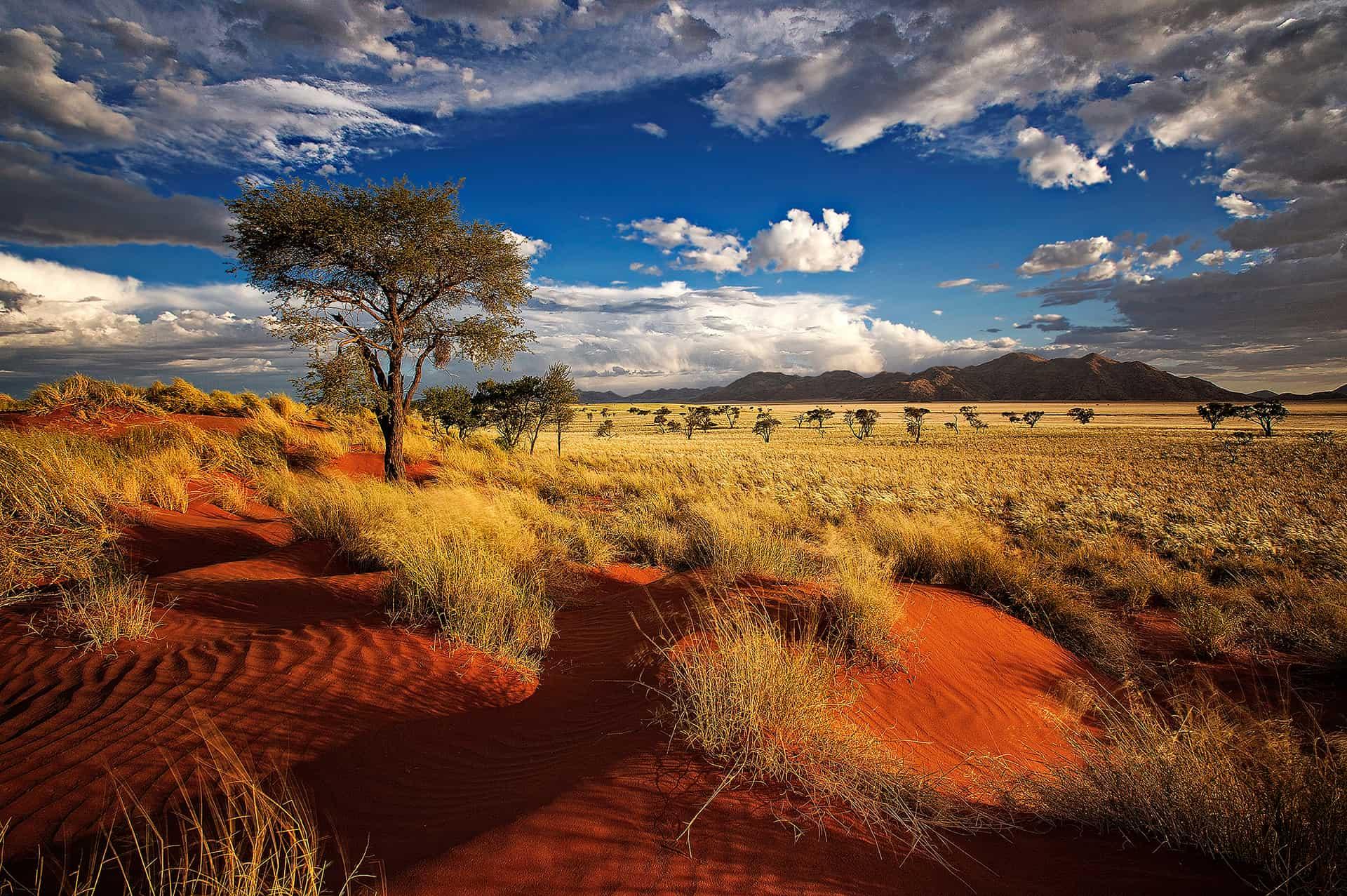 visiter namibie