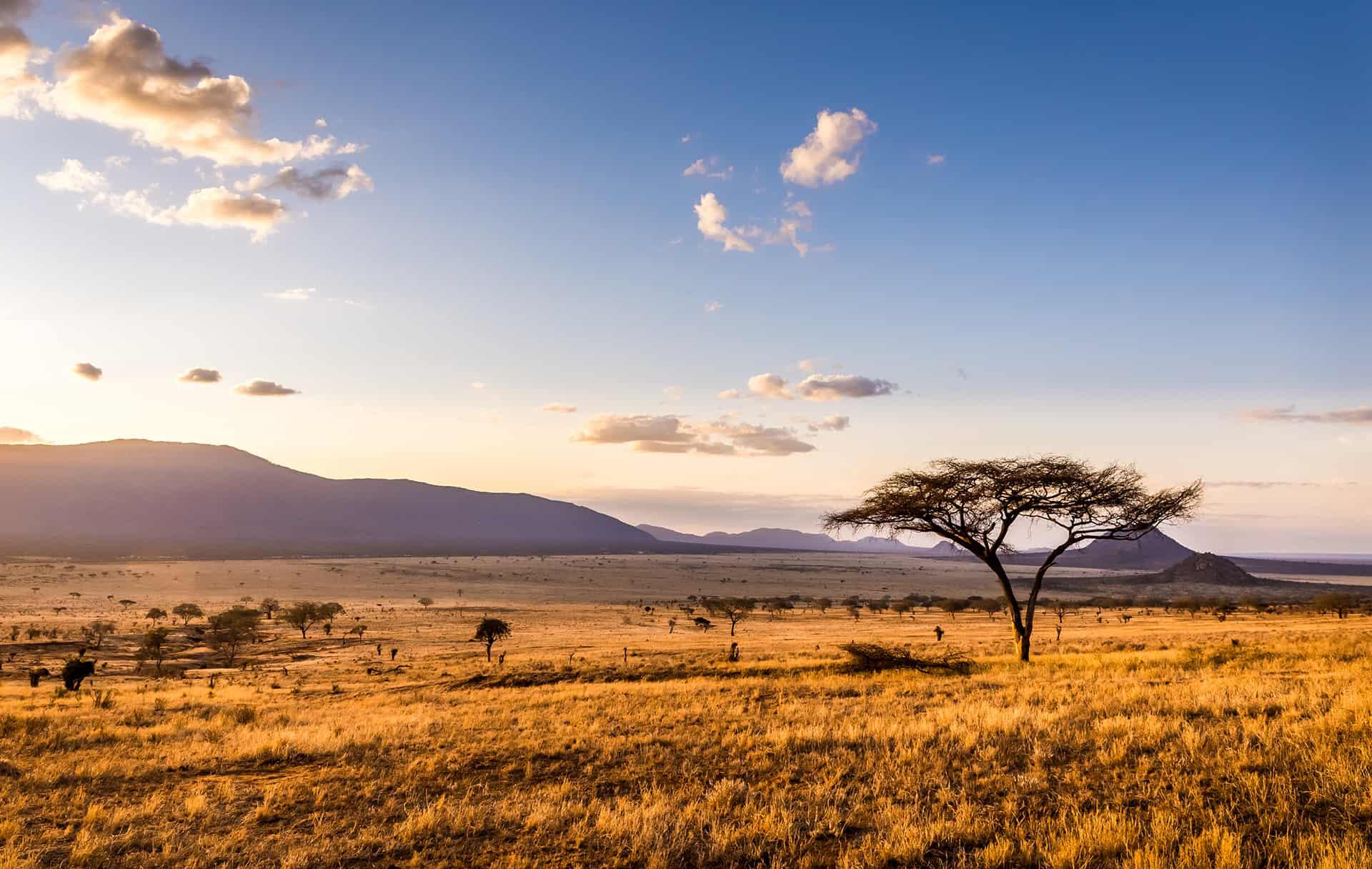 quand aller au kenya