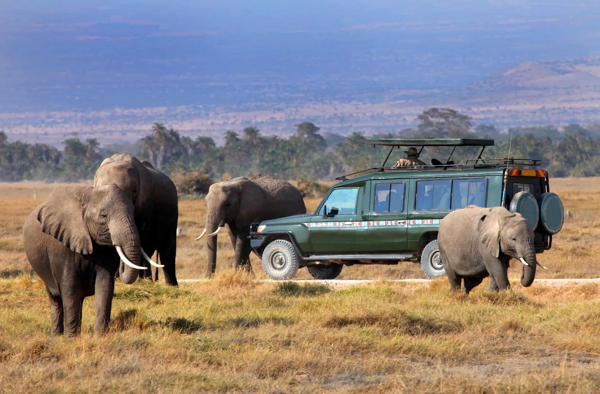 reserve masai mara